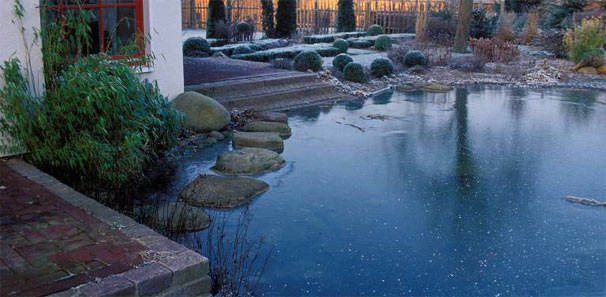Pin fische im gartenteich on pinterest for Goldfische gartenteich winter